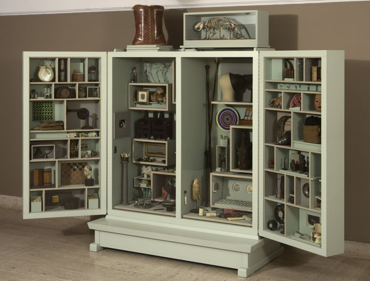 1000 images about the cabinet of curiosity on pinterest