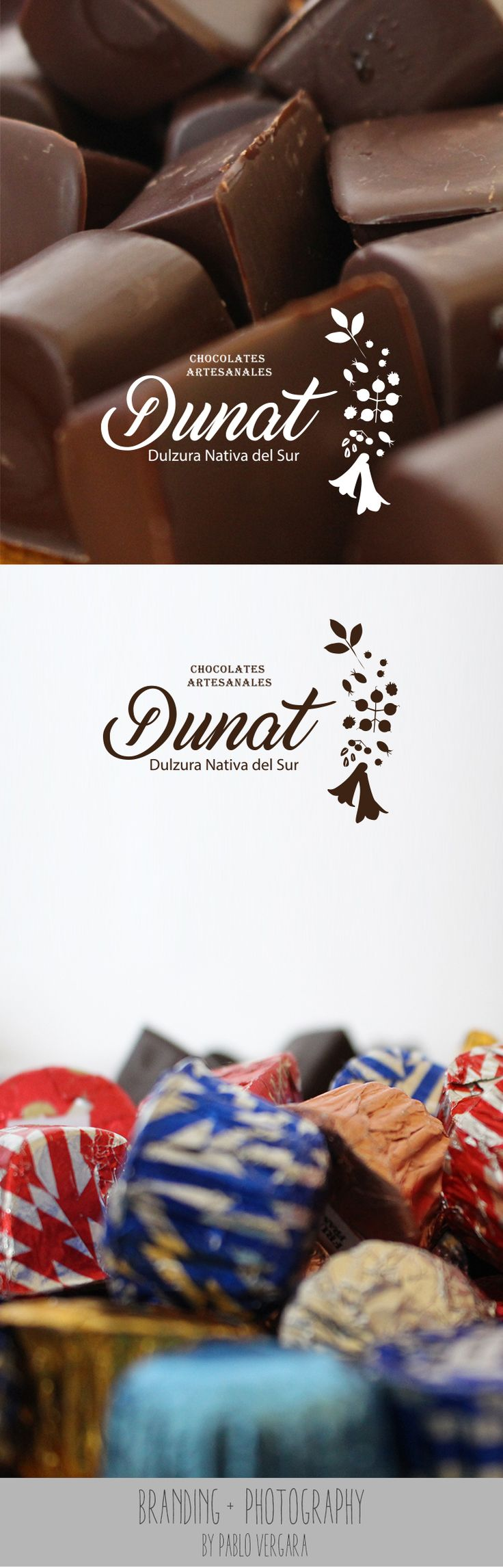 Branding Dunat (Emprendimiento Loncoche) 2016