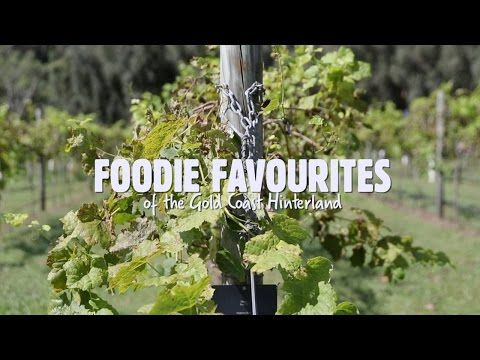 Foodie Favourites from the Gold Coast Hinterland - YouTube