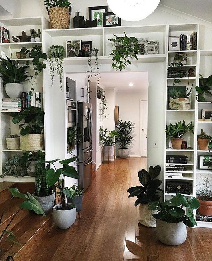 "1,849 Likes, 17 Comments - Indoor plants inspiration. (@plantsindecor) on Instagram: ""Belive you deserve it and universe will serve it. 2018! ❤️"" #InteriorDesignPlants"