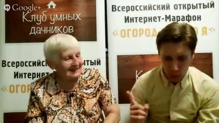 Совместная посадка растений  Галина Кизима