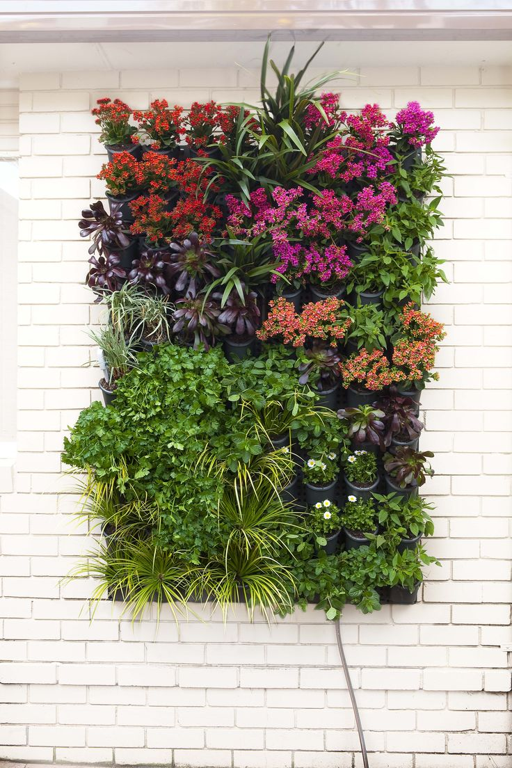 Store-bought vertical garden stystems are easy to install, easy to plant up, and instantly transform a blank outdoor wall. Try mixing different seasonal plants, giving you glorious variation throughout the year.