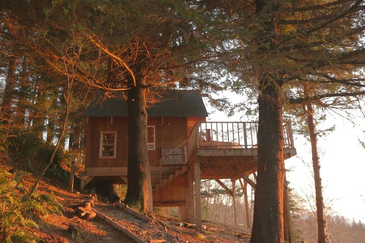 """Entire home/apt in Gold Beach, US. John Muir once said,  """"The best place to ride out a storm is in a tree."""" Enjoy storm watching on the Oregon Coast in a unique way; be warm and cozy inside, feel the sway of the tree, and watch the waves crash below against the famous Samuel Boardm..."""