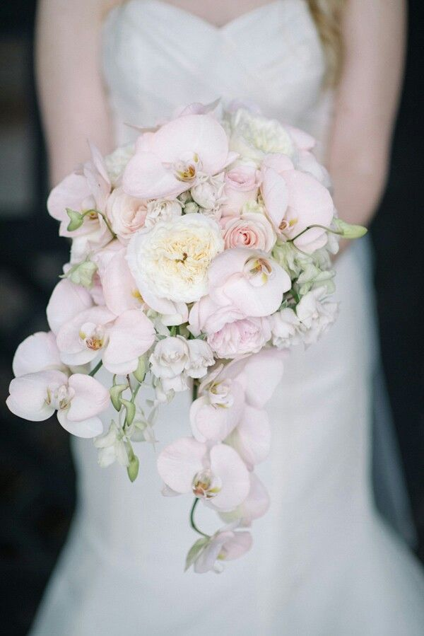 Gorgeous Bride's Cascading Bouquet Featuring White English Garden Roses, Small White Garden Roses, Pastel Pink Roses, & Light Pastel Pink Phalaenopsis Orchids****