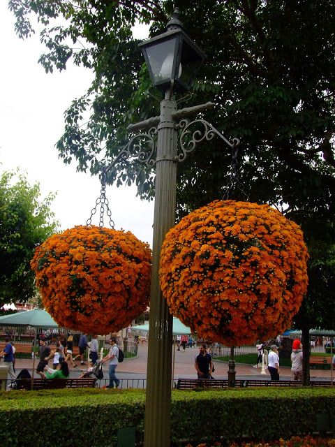 1000 Images About Lamp Pole Decor On Pinterest Hanging