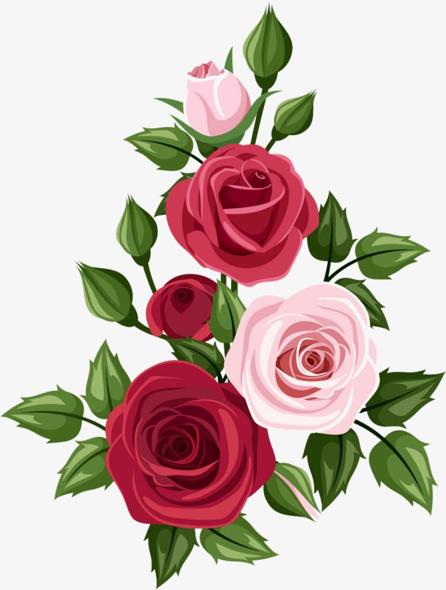 Hand Painted Roses Cartoon Hand Painted Flowers Png Transparent Clipart Image And Psd File For Free Download Flower Bouquet Drawing Rose Painting Flower Art