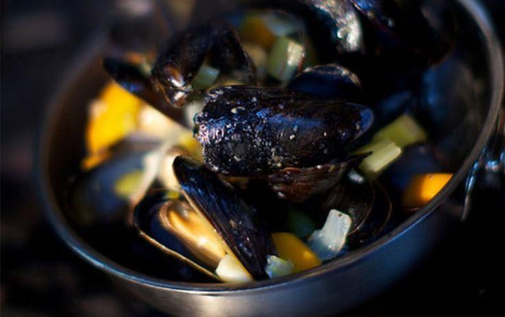 Restaurants Norfolk Eat Out & Dine Guide Fabulous Norfolk