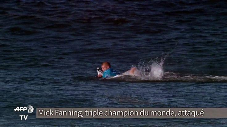 Le surfeur australien Mick Fanning, triple champion du monde, a été attaqué dimanche 19 juillet par un requin et s'en est sorti indemne, durant une compétition en Afrique du Sud.Durée: