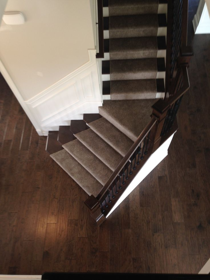 This brown carpet on these dark brown wood stairs creates