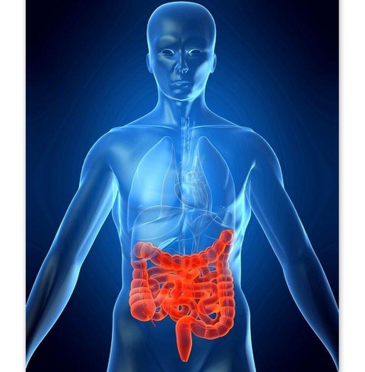 Morbo di Crohn, dove mi porti a cena? Morbo di Crohn , una malattia infiammatoria cronica, di origine non ancora conosciuta, che interessa prevalentemente