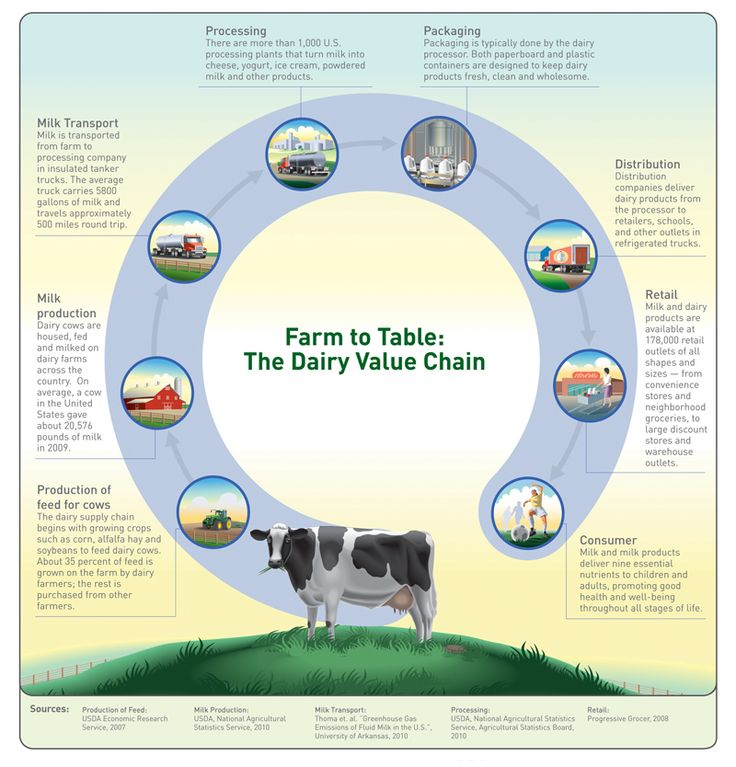 Farm to Table: the Dairy Value Chain