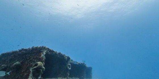 Check out Larvotto Marine Reserve, Monaco on #StreetView