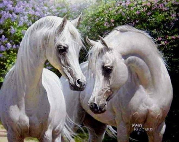 #ArabianHorses #Realistic #Painting | Arabians in the Arts ...