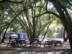 Nestled in big shade trees, Ventura Oaks RV Park!
