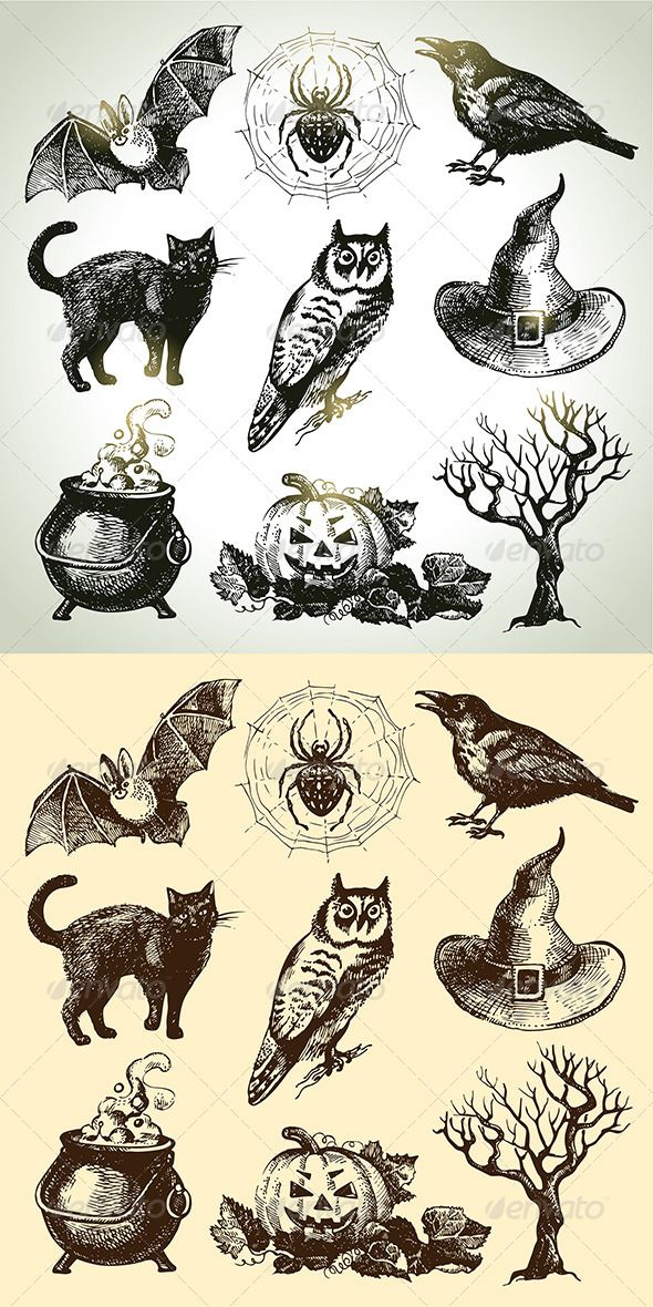 Halloween Hand Drawn Set #GraphicRiver Set of hand drawn vintage Halloween icons: crow, tree, spider, potion, bat, cat, pumpkin, hat, owl. This illustrations can be used in design of printed materials (brochures, invitations, postcards), in web design etc. No bitmaps, only vector used. Zip file contains fully editable EPS 8 vector file, AI CS vector file and high resolution pixels RGB Jpeg image. Created: 17September13 GraphicsFilesIncluded: JPGImage #VectorEPS #AIIllustrator Layered: No…