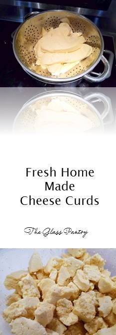 Fresh Cheddar Cheese Curds | Squeaky Cheese | Holiday Appetizer