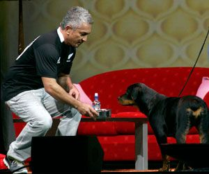 A fan of Cesar Milan, and Rottweiler's.