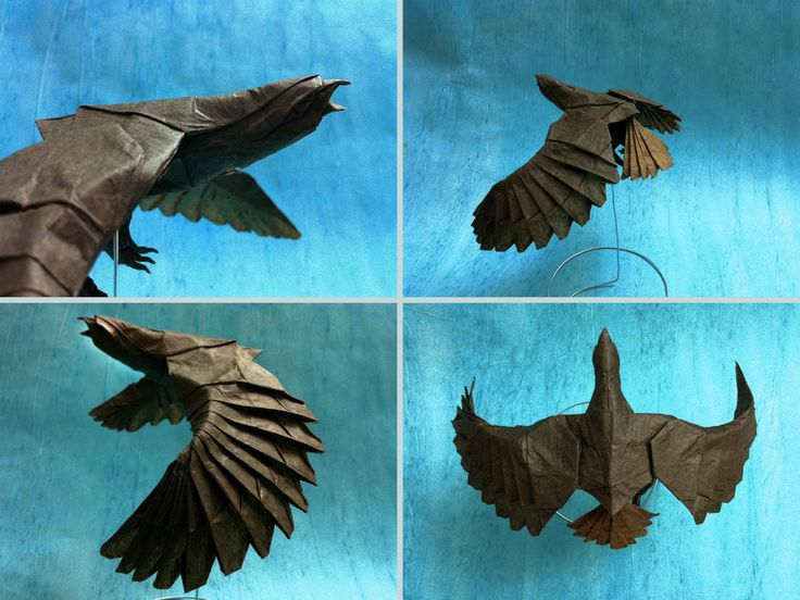 17 best ideas about origami eagle on pinterest origami
