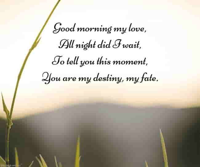 Romantic Good Morning Poems For Him Best Collection
