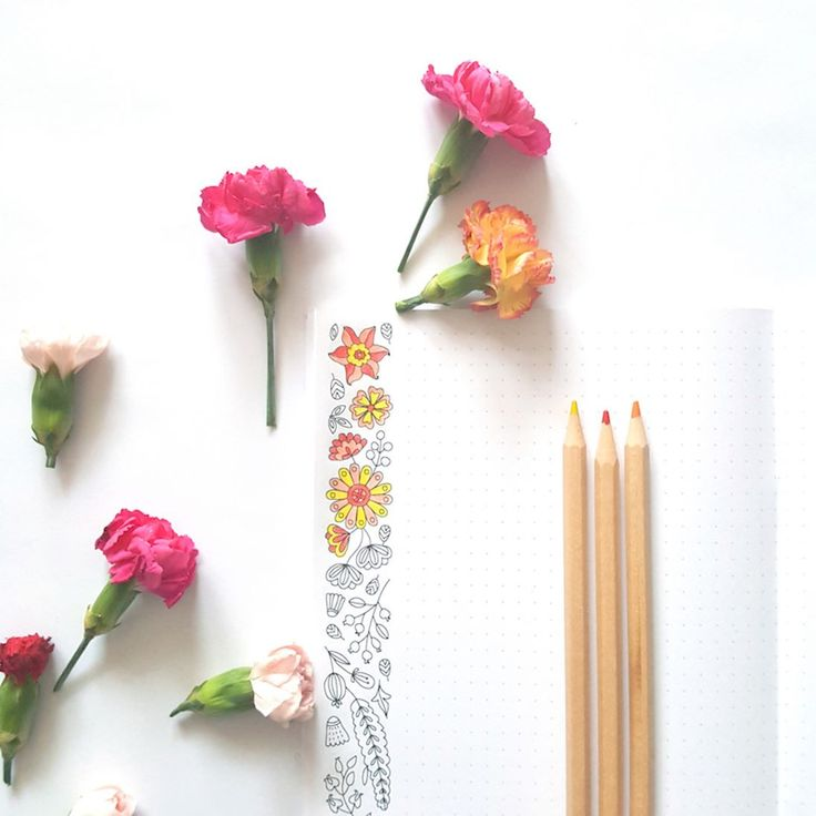 Exciting new addition! After creating dozens of prototypes and testing different papers I'm finally launching the first coloring notebook!  It has floral patterns to color in on the margins & a pattern illustration with birds on the cover. I'll be adding new designs daily followed by a huge sale at the end of next week AND a giveaway!