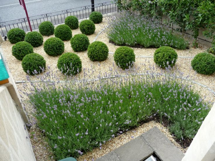 461 best Garden Ideas images on Pinterest Garden ideas Gardens