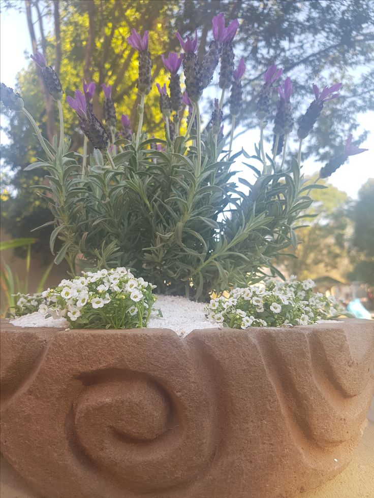 Hurst Projects is now #selling these beautifully #handcrafted posts. Made from wax and #sand the pots are all #natural and look amazing on your coffee tables or work reception spaces!