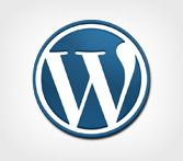 Start your blog or CMS website with using wordpress. Its free open source CMS platform. we produce wordpress website exceed your expectation. - http://www.grbrainstechnologies.com/Wordpress-development-india.html