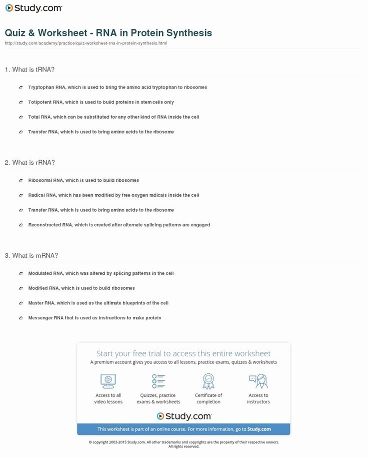 Protein Synthesis Practice Worksheet Lovely Dna Rna and ...