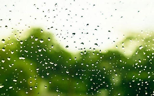 How to make natural white vinegar shower cleaner