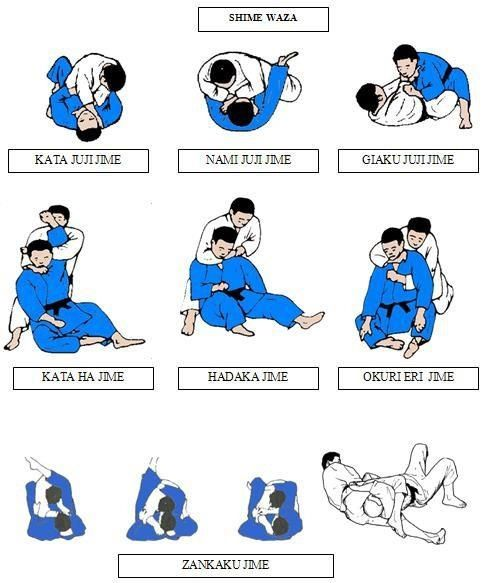 Judo - Shime waza | chokehold | A restraining move in which one person seizes another around the neck in a tight grip, typically from behind  | chapter 77