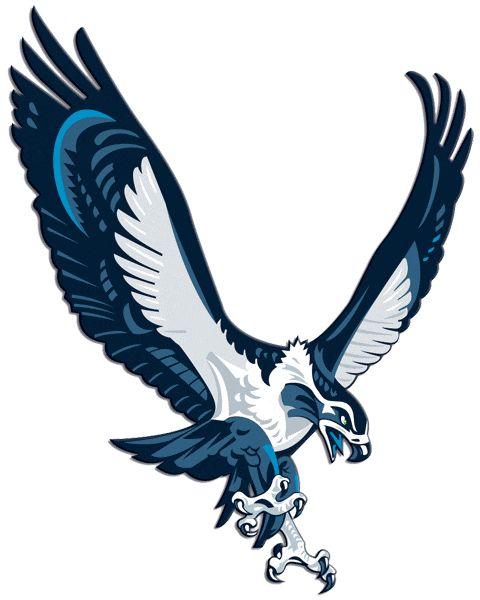 seattle+seahawks | Seattle Seahawks Alternate Logo (2002) - A Seahawk coming in for ...