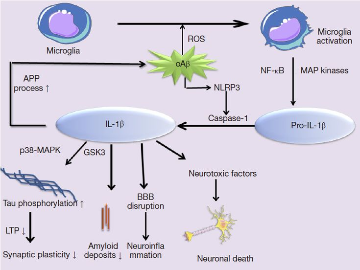 Role of pro-inflammatory cytokines released from microglia in Alzheimer's disease - Wang - Annals of Translational Medicine