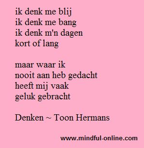 Denken - Toon Hermans