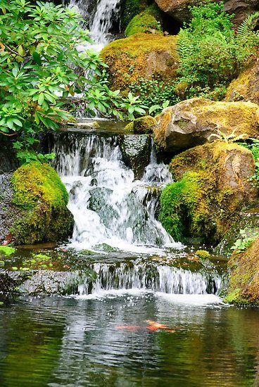 Japanese Ponds Designs Waterfall Diego Re Portfolio