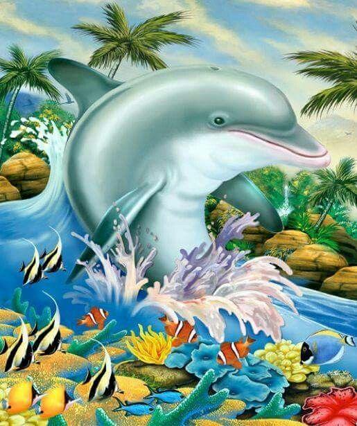 веселые рисунки дельфинов видео автоматически
