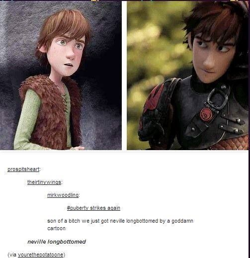 How to Train Your Dragon #funny Excuse the language, it's so true though!!!