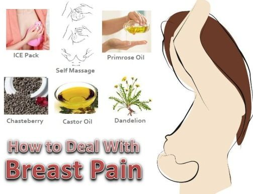 funny words for breasts