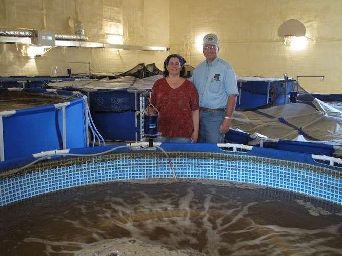 Iowa couple retrofits former elementary school into shrimp for Aquaponics aeration