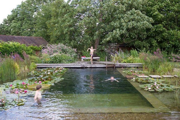 Piscine naturelle : la piscine écologique sans entretien !