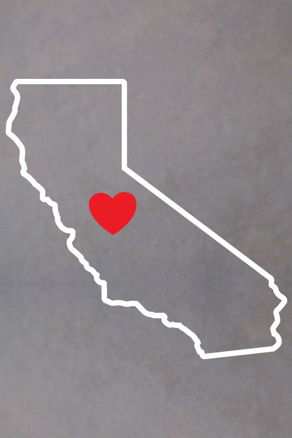 California Map Bear%0A journalism cover letters
