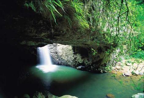 Activities - Coffs Coast Holiday Parks