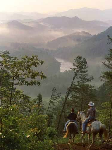 Cocke County, Tennessee mountains.  (Google Image Result for http://www.eteda.org/sites/www/Uploads/Images/Cocke%2520County%2520Mountains.jpg)