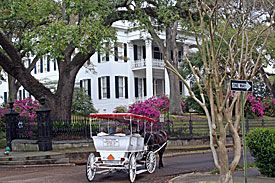 Stanton Hall is in Natchez, Mississippi  It is very beautiful but especially in the spring.  I personally took a picture that i had enlarged and hung on my walls with all the flowers in bloom.