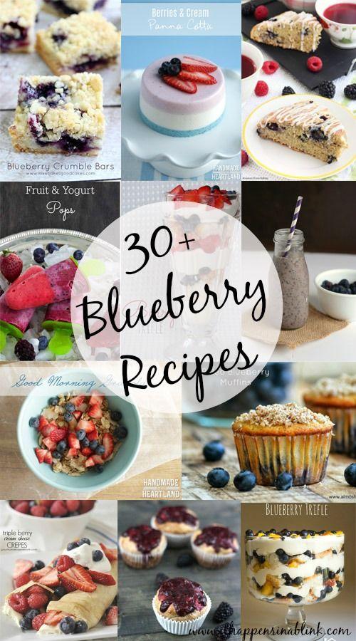 30 Plus Blueberry Recipes
