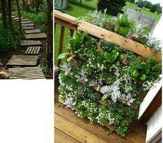 Lavičky, kvetináče, stolíky, malé vertikálne záhrady a dokonca aj prístrešky pokryté rastlinami. Všetky tieto veci môžu zdobiť vašu záhradu s jednoduchou úpravou paliet.
