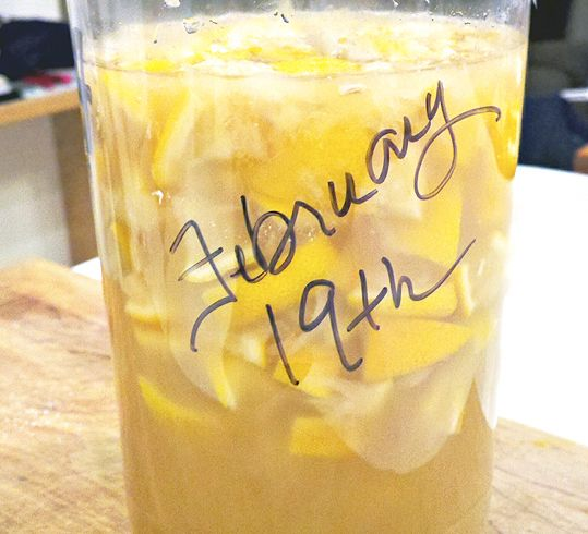 Make Your Own Citrus Enzyme Cleaner - One Good Thing by Jillee