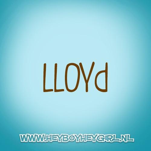 Lloyd (Voor meer inspiratie, en unieke geboortekaartjes kijk op www.heyboyheygirl.nl)