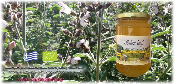 Βιολογικό μέλι Φασκόμηλου από τη Μάνη 'Silver Leaf'Το μέλι φασκόμηλου του μελισσοπαραγωγού Σταύρου Ντάρμου, είναι ένα αγνό και φυσικό μέλι (δεν είναι ζεσταμένο, φιλτραρισμένο).  Το συλλέγουν οι μέλισσες από τα άνθη των αυτοφυών φυτών φασκόμηλου στα βουνά της Μάνης, που λάμπουν κάθε άνοιξη σε φωτεινά βιολετί χρώματα. Είναι ένα σπάνιο μέλι, με χρυσαφί χρώμα και μοναδική αρωματική γεύση!