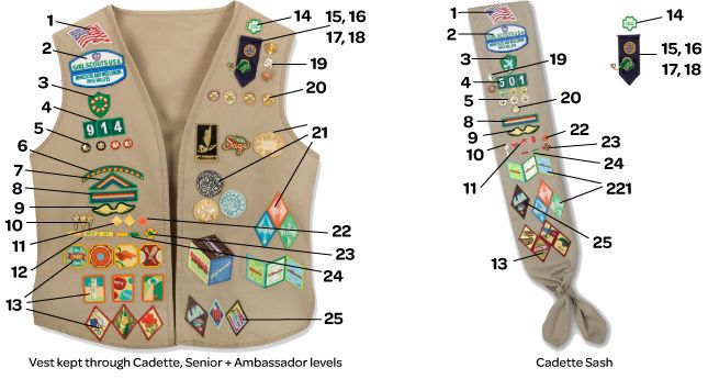 guide to the correct placement of badges  awards and