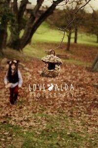 Autumn leaves bird nest photography lovealda.com